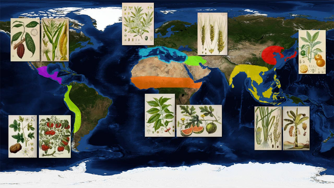 origin of food plants map