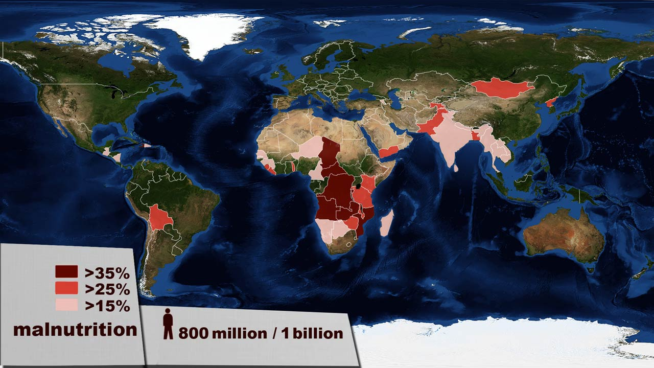 Malnutrition world map